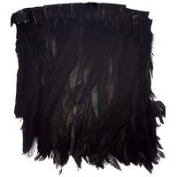 Black Strung Feathers