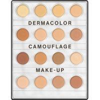 Concealer Palettes