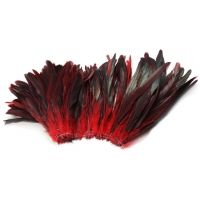 Coque Feathers 8-10 inch